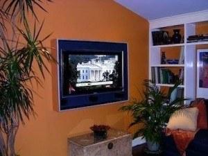 ugly-tv-hide
